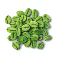 Green Coffee Bean Extract and weight loss